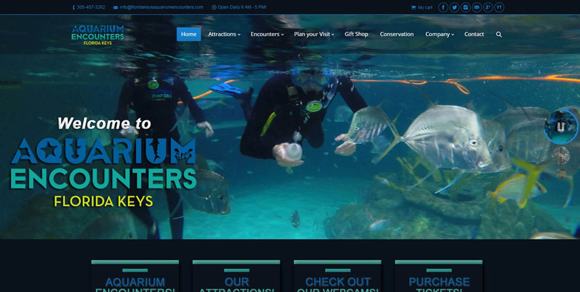 An image of the homepage of Florida Keys Aquarium Encounters, website created by Not Fade Away Marketing