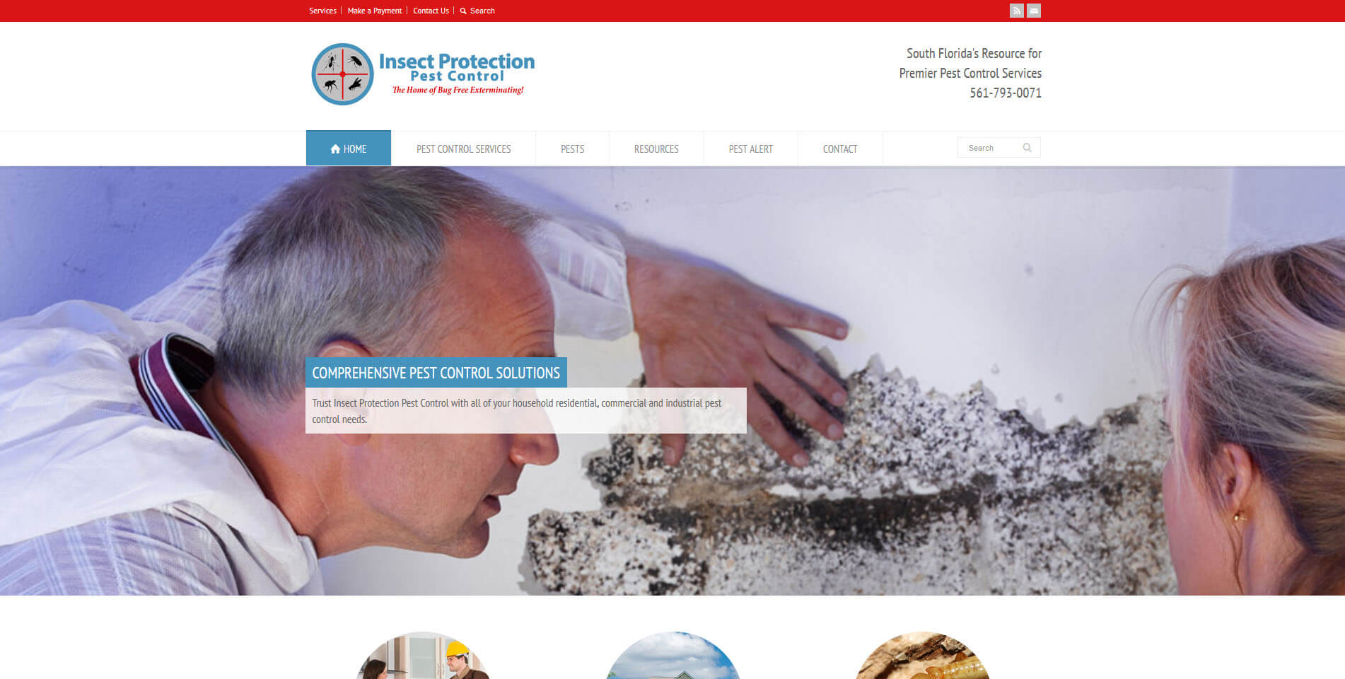 An image of the homepage of Insect Protection Pest Control, website created by Not Fade Away Marketing