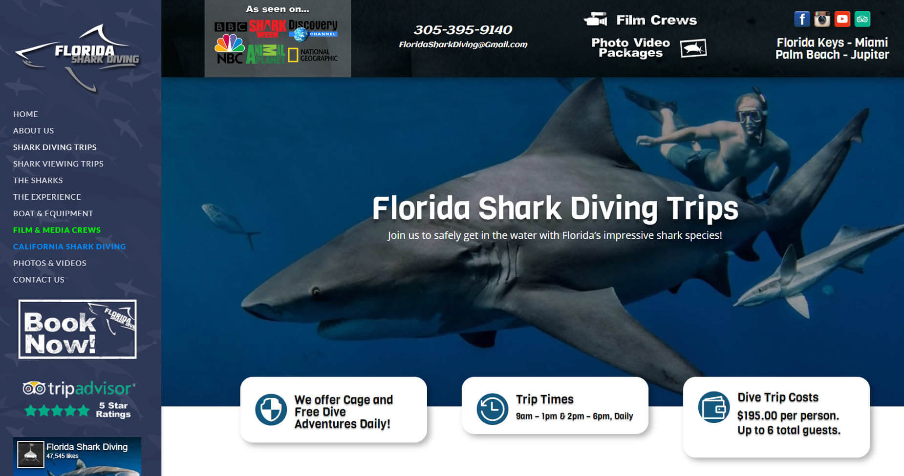 An image of the shark diving page of Florida Shark Diving, website created by Not Fade Away Marketing