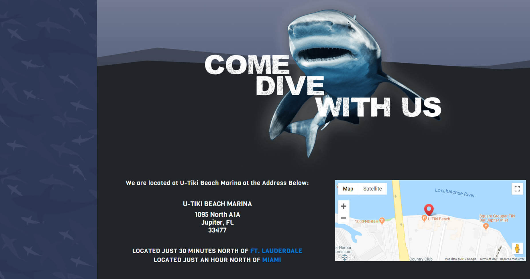 An image of the Come Dive with Us section of Florida Shark Diving, website created by Not Fade Away Marketing