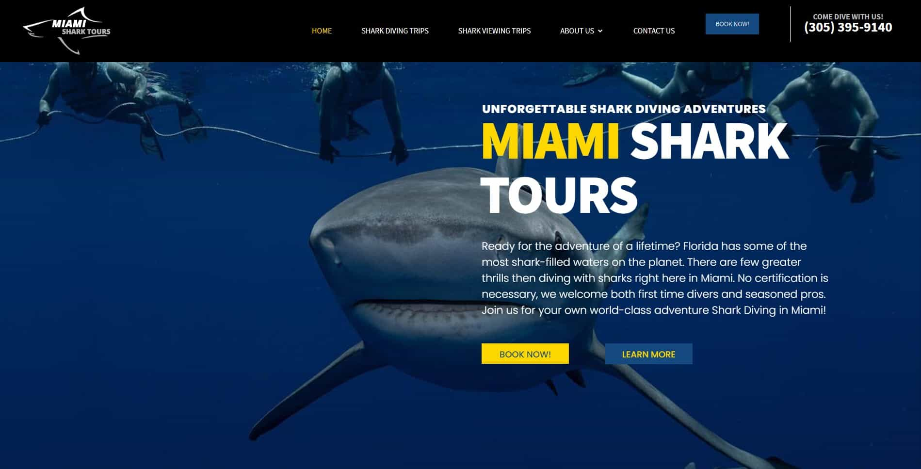 An image of the Miami Shark tours website built by Not Fade Away.